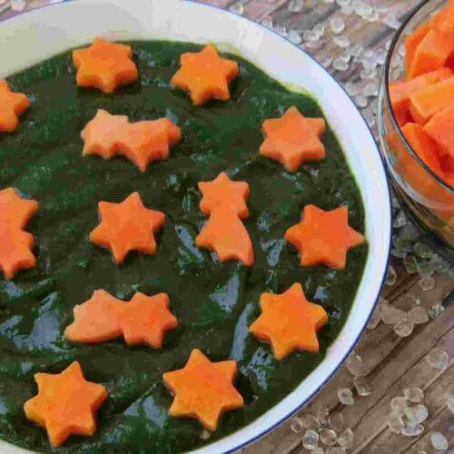 Mango Spinach Smoothie
